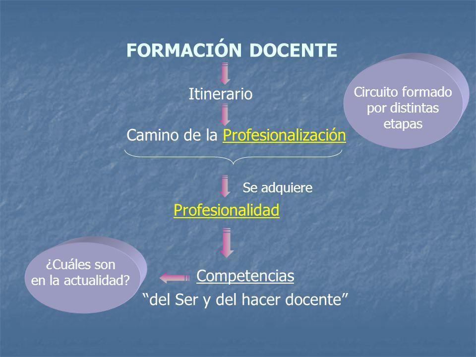 FORMACIÓN DOCENTE Itinerario Camino de la Profesionalización Profesionalidad Competencias del Ser y del hacer docente Se adquiere ¿Cuáles son en la ac