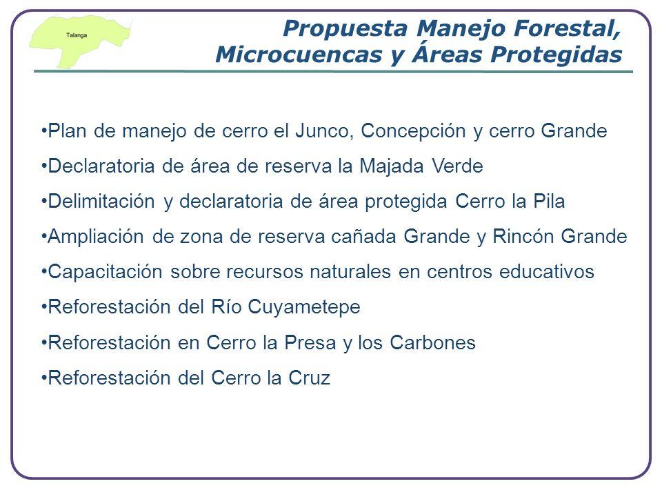 Company Logo www.themegallery.com Propuesta Manejo Forestal, Microcuencas y Áreas Protegidas Plan de manejo de cerro el Junco, Concepción y cerro Gran