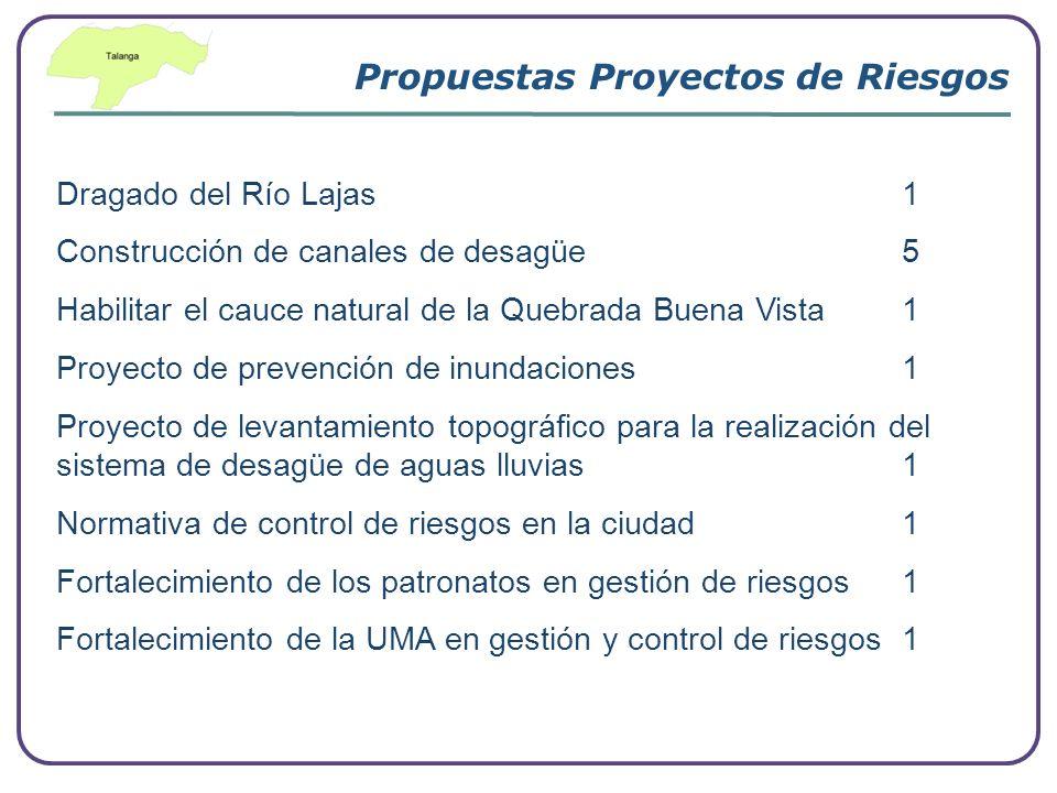 Company Logo www.themegallery.com Propuestas Proyectos de Riesgos Dragado del Río Lajas 1 Construcción de canales de desagüe 5 Habilitar el cauce natu