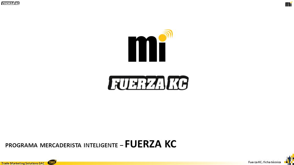 Trade Marketing Solutions SAC Fuerza KC, ficha técnica PROGRAMA MERCADERISTA INTELIGENTE – FUERZA KC