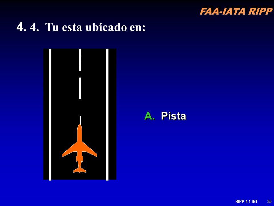 FAA-IATA RIPP RIPP 4.1 INT35 4. 4. Tu esta ubicado en: A. Pista