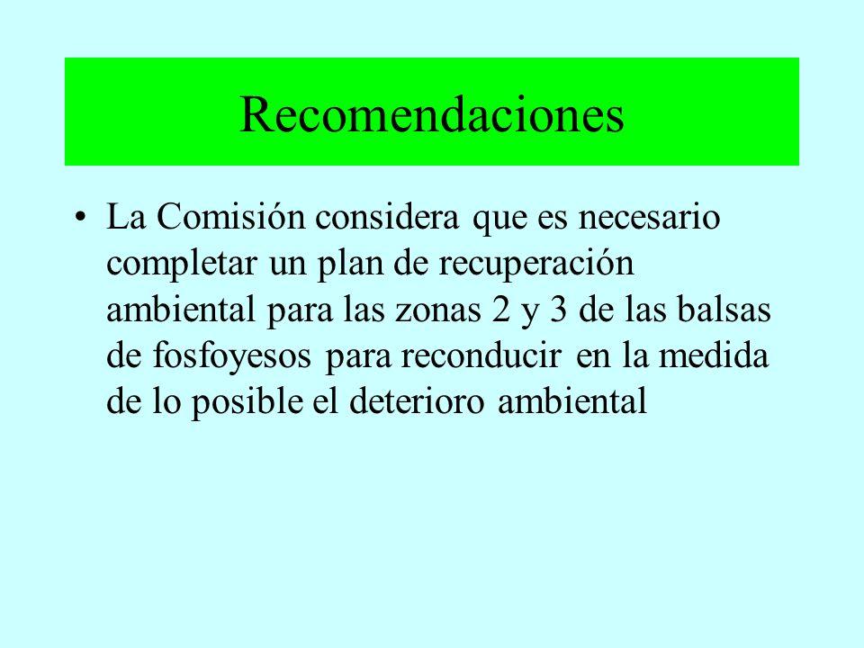 La Comisión considera que es necesario completar un plan de recuperación ambiental para las zonas 2 y 3 de las balsas de fosfoyesos para reconducir en