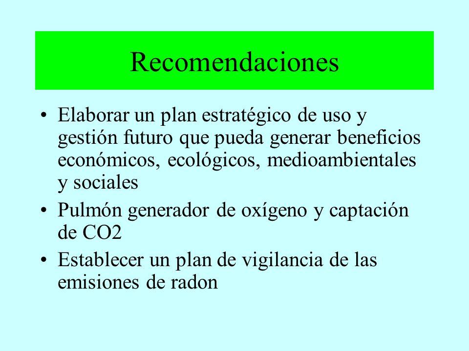 Recomendaciones Elaborar un plan estratégico de uso y gestión futuro que pueda generar beneficios económicos, ecológicos, medioambientales y sociales