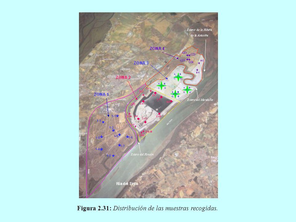 La Comisión considera que es necesario completar un plan de recuperación ambiental para las zonas 2 y 3 de las balsas de fosfoyesos para reconducir en la medida de lo posible el deterioro ambiental