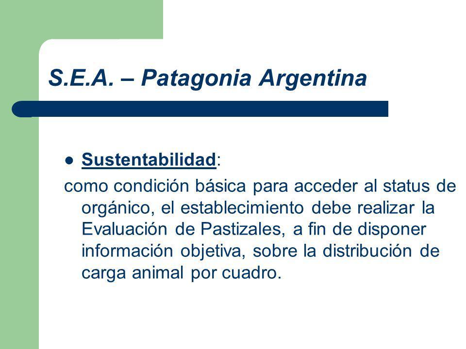 S.E.A.