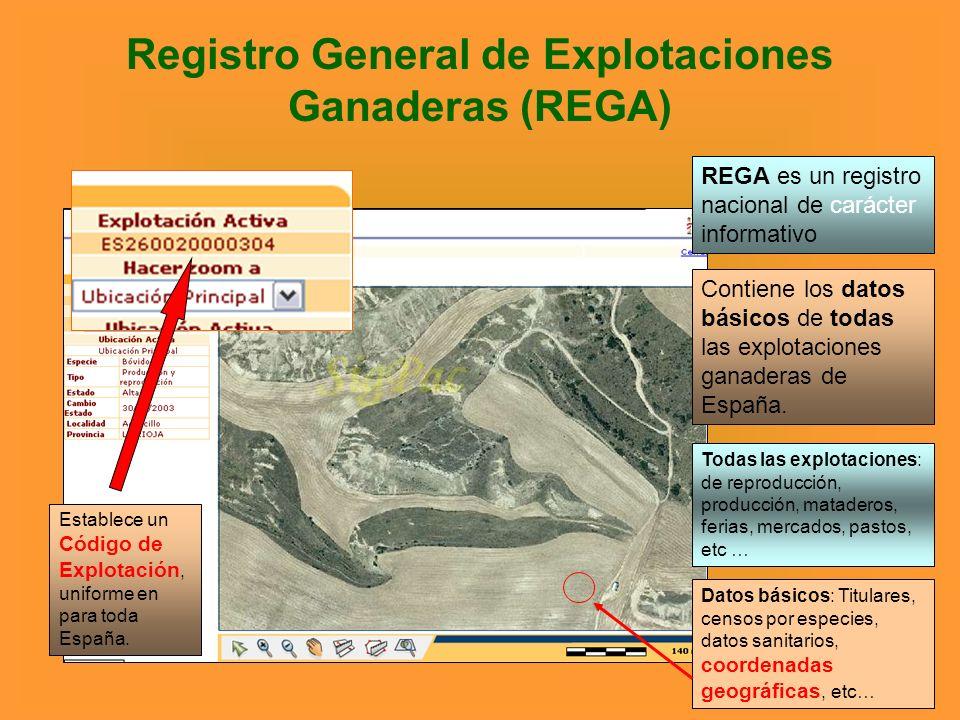 Registro General de Explotaciones Ganaderas (REGA) REGA es un registro nacional de carácter informativo Contiene los datos básicos de todas las explot