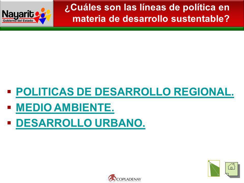 ¿Cuáles son las líneas de política en materia de desarrollo sustentable? POLITICAS DE DESARROLLO REGIONAL. MEDIO AMBIENTE. DESARROLLO URBANO.