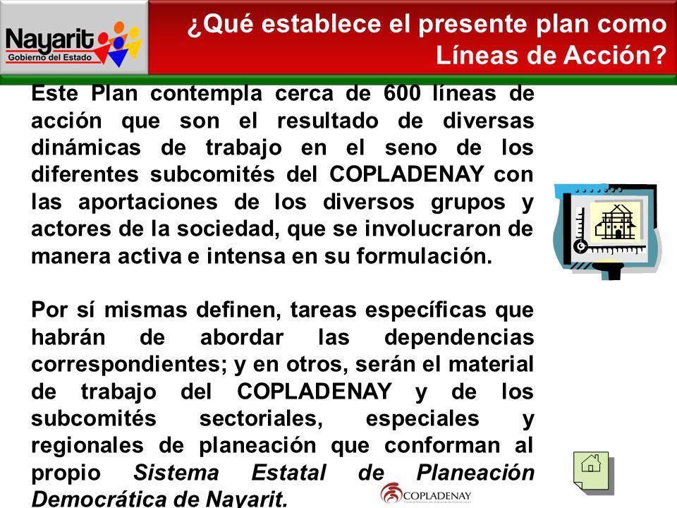 ¿Qué establece el presente plan como Líneas de Acción? Este Plan contempla cerca de 600 líneas de acción que son el resultado de diversas dinámicas de