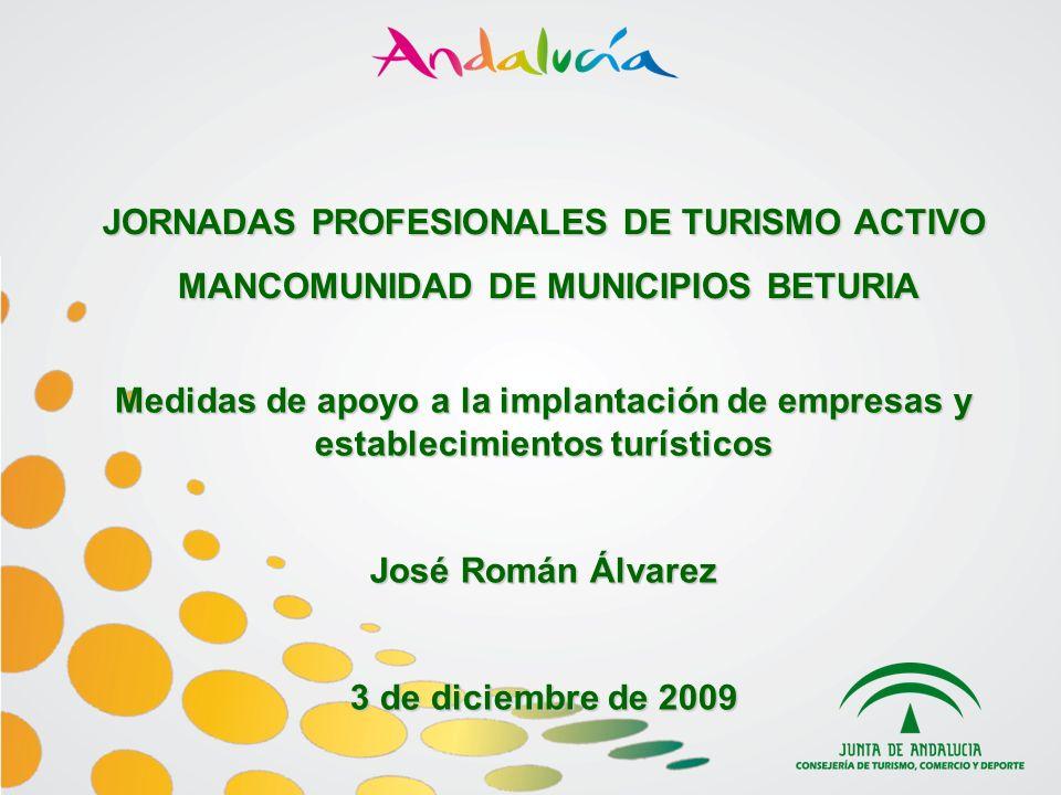 JORNADAS PROFESIONALES DE TURISMO ACTIVO MANCOMUNIDAD DE MUNICIPIOS BETURIA MANCOMUNIDAD DE MUNICIPIOS BETURIA Medidas de apoyo a la implantación de empresas y establecimientos turísticos José Román Álvarez 3 de diciembre de 2009
