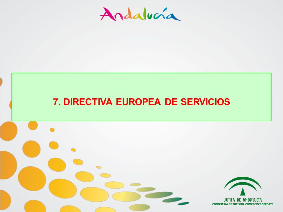 7. DIRECTIVA EUROPEA DE SERVICIOS