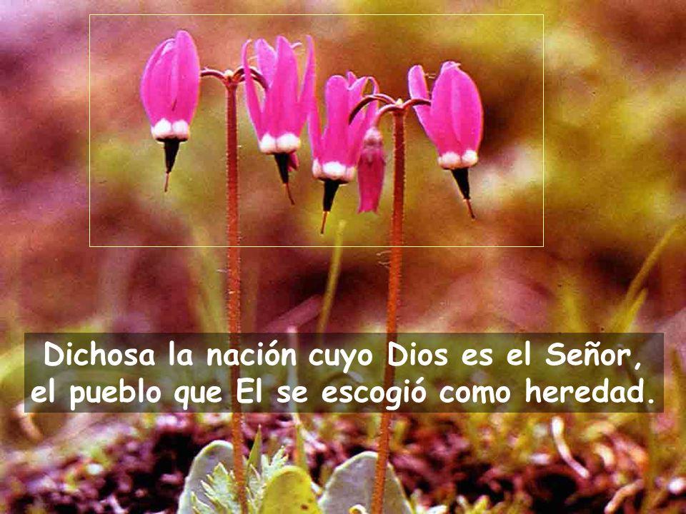 Dichosa la nación cuyo Dios es el Señor, el pueblo que El se escogió como heredad.