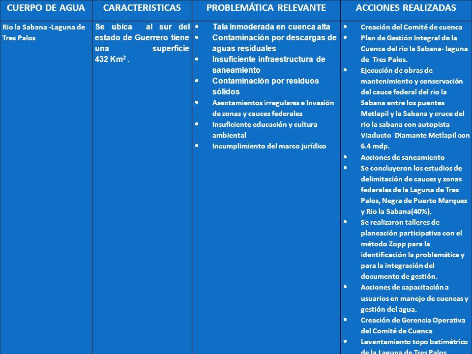 CUERPO DE AGUACARACTERISTICASPROBLEMÁTICA RELEVANTEACCIONES REALIZADAS Rio la Sabana -Laguna de Tres Palos Se ubica al sur del estado de Guerrero tien