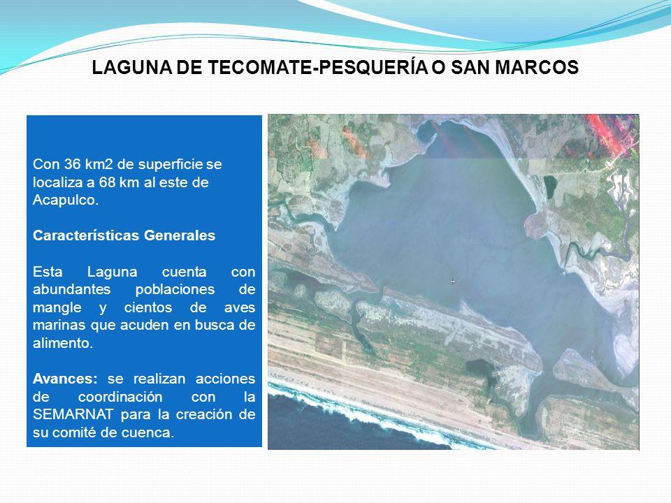 Con 36 km2 de superficie se localiza a 68 km al este de Acapulco. Características Generales Esta Laguna cuenta con abundantes poblaciones de mangle y