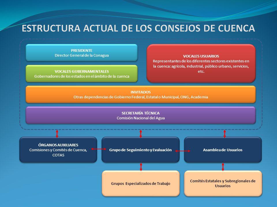 PRESIDENTE Director General de la Conagua VOCALES GUBERNAMENTALES Gobernadores de los estados en el ámbito de la cuenca VOCALES USUARIOS Representante