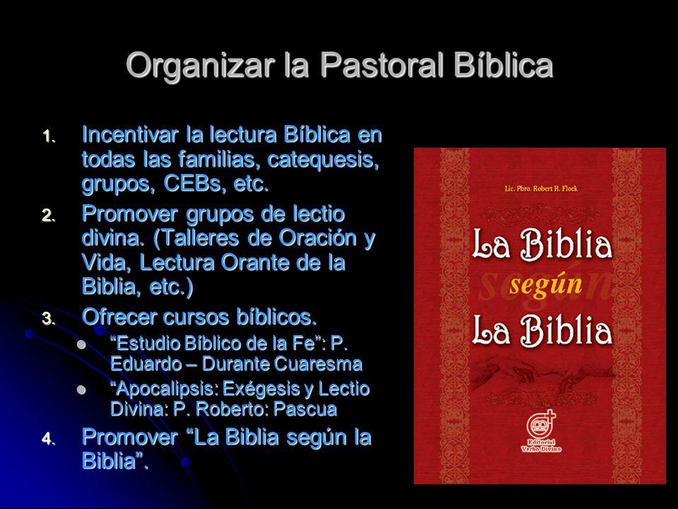 Organizar la Pastoral Bíblica 1. Incentivar la lectura Bíblica en todas las familias, catequesis, grupos, CEBs, etc. 2. Promover grupos de lectio divi