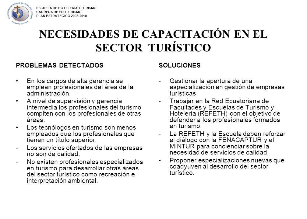 NECESIDADES DE CAPACITACIÓN EN EL SECTOR TURÍSTICO PROBLEMAS DETECTADOS En los cargos de alta gerencia se emplean profesionales del área de la adminis