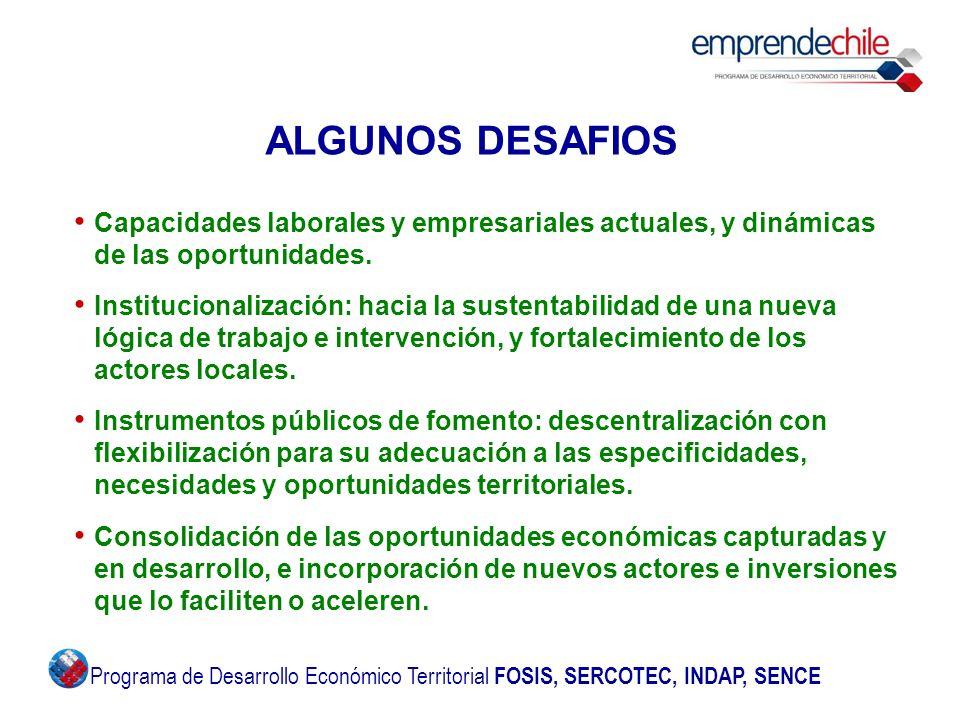 ALGUNOS DESAFIOS Capacidades laborales y empresariales actuales, y dinámicas de las oportunidades. Institucionalización: hacia la sustentabilidad de u