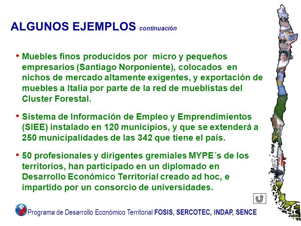 ALGUNOS EJEMPLOS continuación Muebles finos producidos por micro y pequeños empresarios (Santiago Norponiente), colocados en nichos de mercado altamen