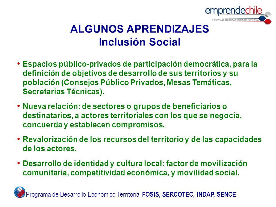 ALGUNOS APRENDIZAJES Inclusión Social Espacios público-privados de participación democrática, para la definición de objetivos de desarrollo de sus ter