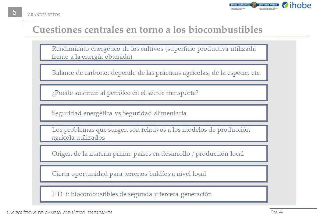 LAS POLÍTICAS DE CAMBIO CLIMÁTICO EN EUSKADI Pág. 44 Cuestiones centrales en torno a los biocombustibles GRANDES RETOS 5 Rendimiento energético de los