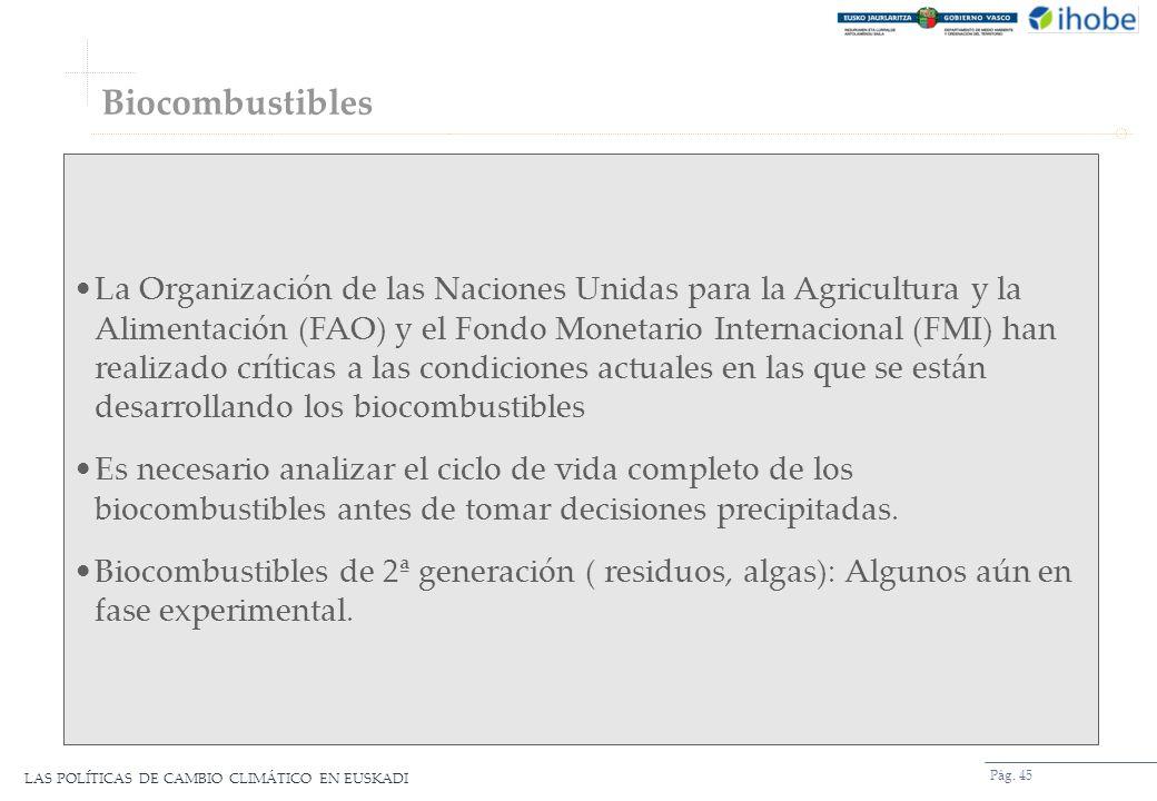 LAS POLÍTICAS DE CAMBIO CLIMÁTICO EN EUSKADI Biocombustibles Pág. 45 La Organización de las Naciones Unidas para la Agricultura y la Alimentación (FAO