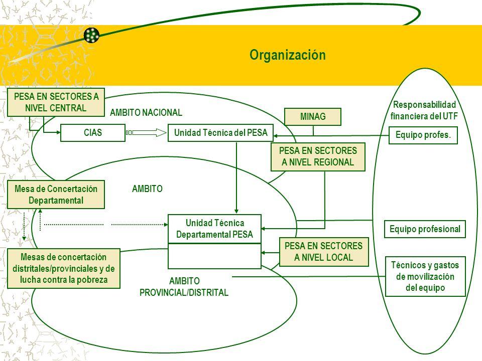 17 Organización PESA EN SECTORES A NIVEL CENTRAL CIASUnidad Técnica del PESA MINAG AMBITO NACIONAL PESA EN SECTORES A NIVEL REGIONAL Equipo profes. Re