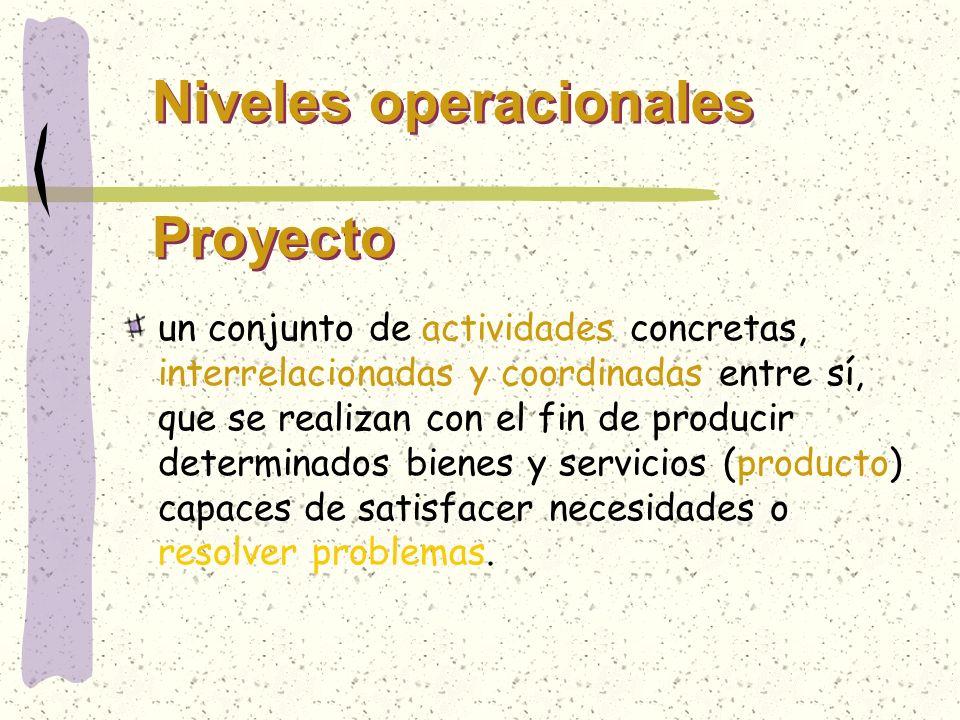 Niveles operacionales Proyecto un conjunto de actividades concretas, interrelacionadas y coordinadas entre sí, que se realizan con el fin de producir
