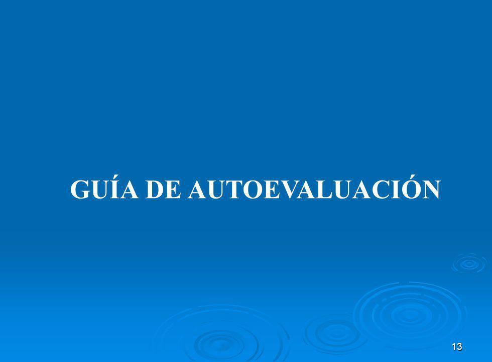 13 GUÍA DE AUTOEVALUACIÓN