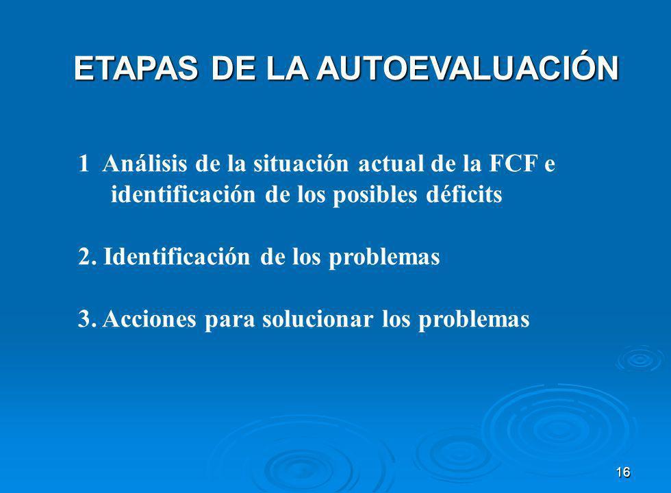 16 ETAPAS DE LA AUTOEVALUACIÓN 1 Análisis de la situación actual de la FCF e identificación de los posibles déficits 2.