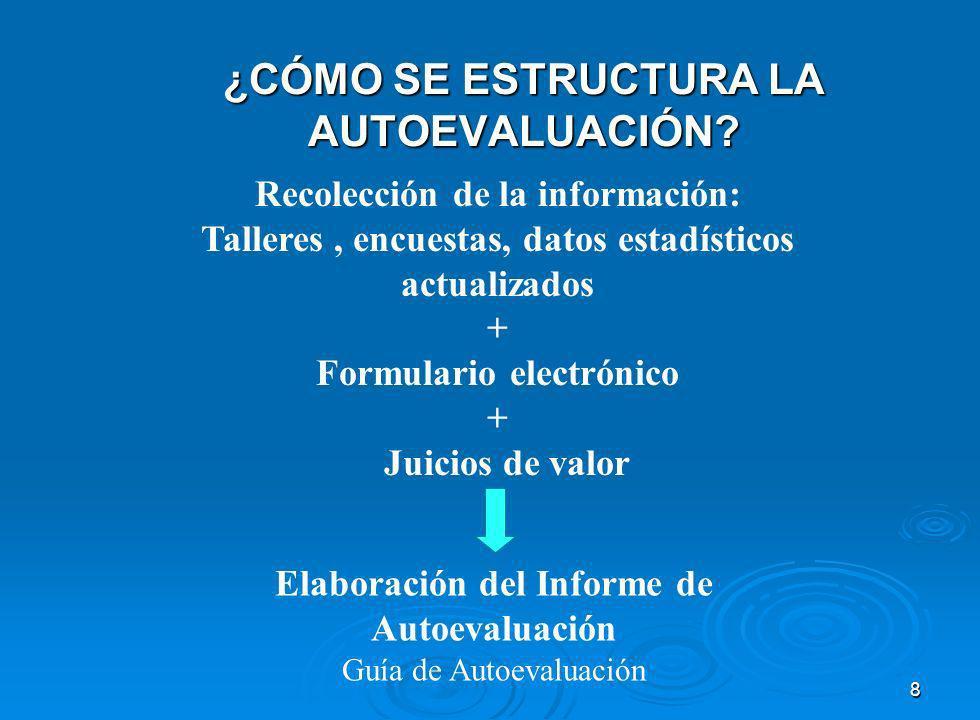 8 ¿CÓMO SE ESTRUCTURA LA AUTOEVALUACIÓN.