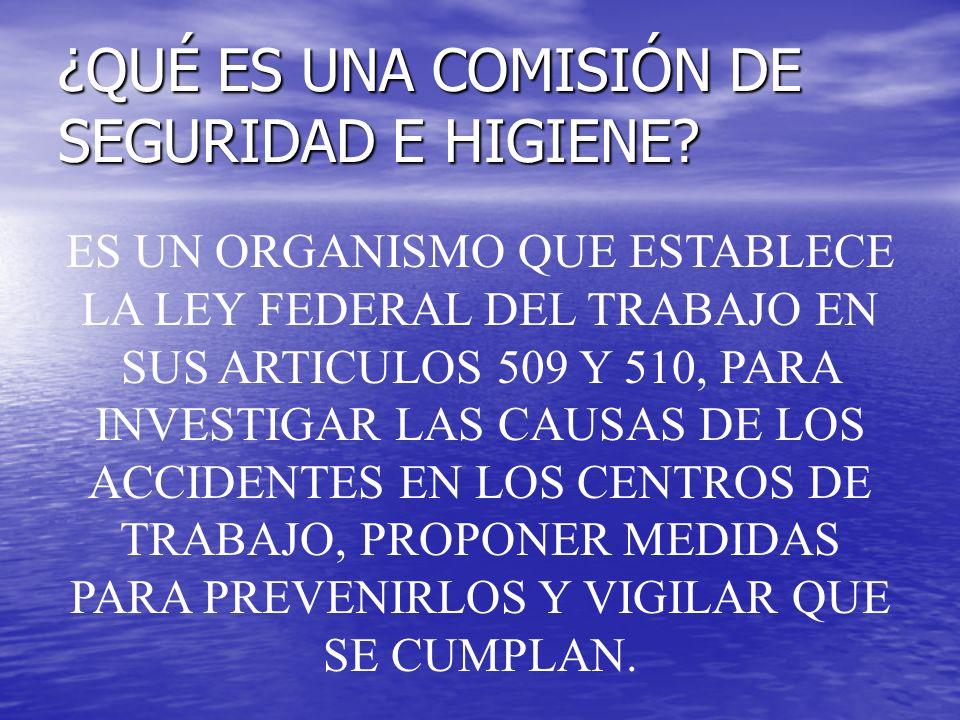 DIRECCION DE PROMOCION DE LA SALUD Y SEGURIDAD EN EL TRABAJO Titular: Lic.
