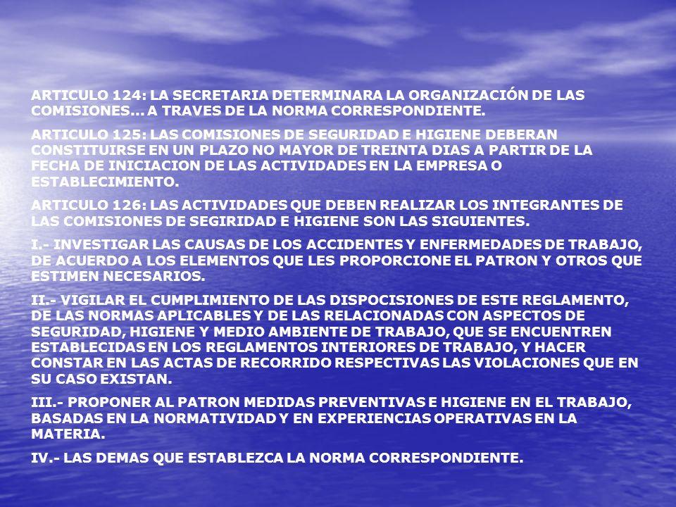 NOM-019-STPS-2004, RELATIVA A LA CONSTITUCION Y FUNCIONAMIENTO DE LAS COMISIONES DE SEGURIDAD Y FUNCIONAMIENTO DE LAS COMISIONES DE SEGURIDAD E HIGIENE EN LOS CENTROS DE TRABAJO.