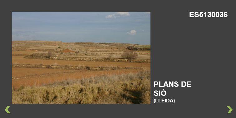 PLANS DE SIÓ (LLEIDA) ES5130036
