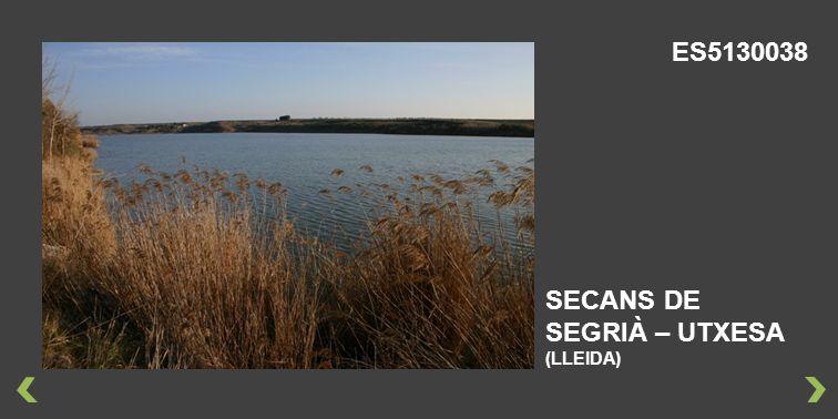 SECANS DE SEGRIÀ – UTXESA (LLEIDA) ES5130038
