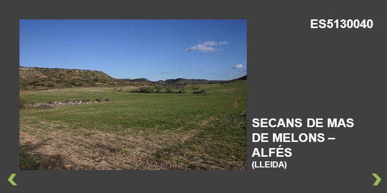 SECANS DE MAS DE MELONS – ALFÉS (LLEIDA) ES5130040