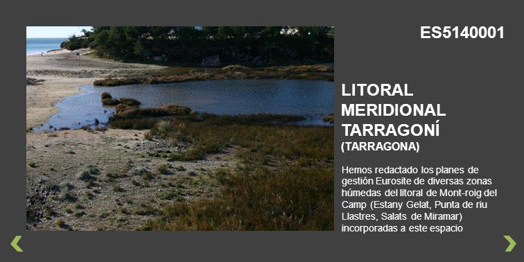 Hemos redactado los planes de gestión Eurosite de diversas zonas húmedas del litoral de Mont-roig del Camp (Estany Gelat, Punta de riu Llastres, Salats de Miramar) incorporadas a este espacio LITORAL MERIDIONAL TARRAGONÍ (TARRAGONA) ES5140001
