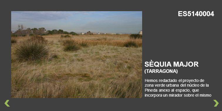 Hemos redactado el proyecto de zona verde urbana del núcleo de la Pineda anexo al espacio, que incorpora un mirador sobre el mismo SÈQUIA MAJOR (TARRAGONA) ES5140004