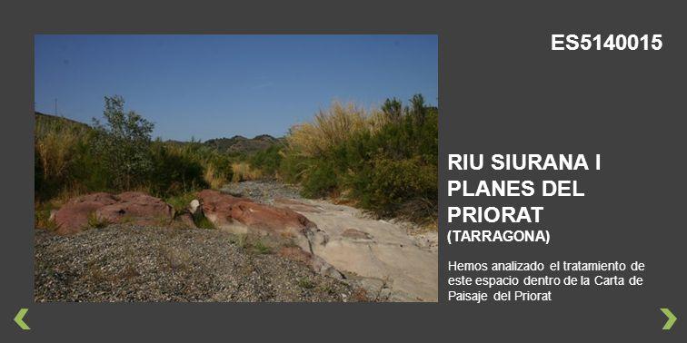 Hemos analizado el tratamiento de este espacio dentro de la Carta de Paisaje del Priorat RIU SIURANA I PLANES DEL PRIORAT (TARRAGONA) ES5140015