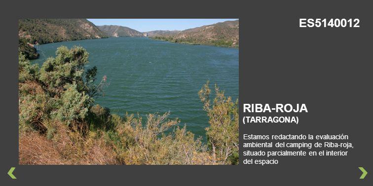 Estamos redactando la evaluación ambiental del camping de Riba-roja, situado parcialmente en el interior del espacio RIBA-ROJA (TARRAGONA) ES5140012