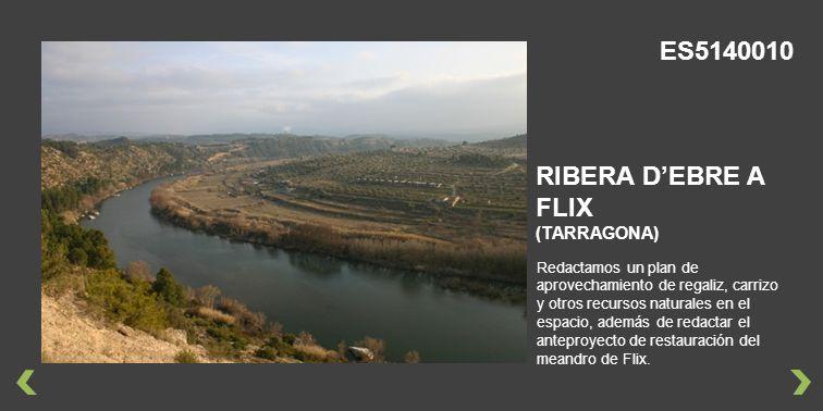 Redactamos un plan de aprovechamiento de regaliz, carrizo y otros recursos naturales en el espacio, además de redactar el anteproyecto de restauración del meandro de Flix.