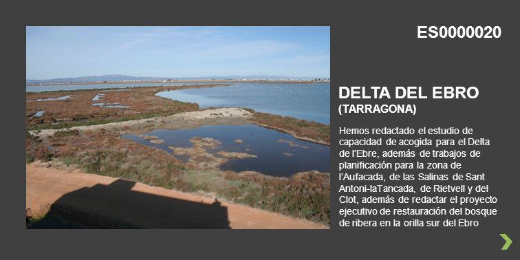 Hemos redactado el estudio de capacidad de acogida para el Delta de lEbre, además de trabajos de planificación para la zona de lAufacada, de las Salinas de Sant Antoni-laTancada, de Rietvell y del Clot, además de redactar el proyecto ejecutivo de restauración del bosque de ribera en la orilla sur del Ebro DELTA DEL EBRO (TARRAGONA) ES0000020