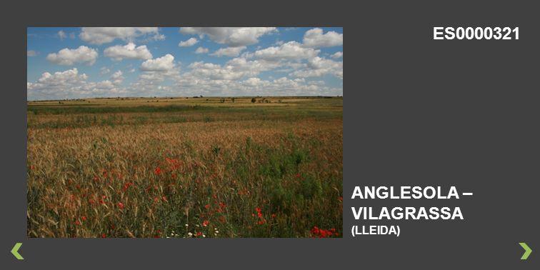 ANGLESOLA – VILAGRASSA (LLEIDA) ES0000321