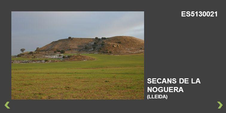 SECANS DE LA NOGUERA (LLEIDA) ES5130021