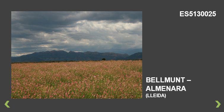 BELLMUNT – ALMENARA (LLEIDA) ES5130025