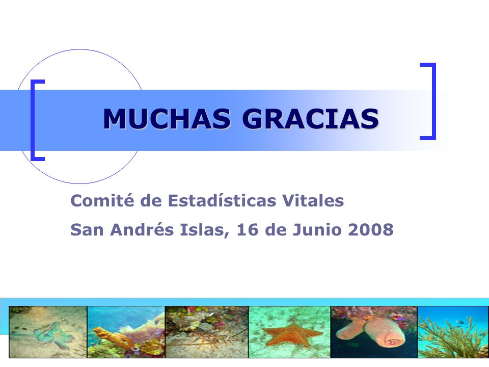 21 MUCHAS GRACIAS Comité de Estadísticas Vitales San Andrés Islas, 16 de Junio 2008