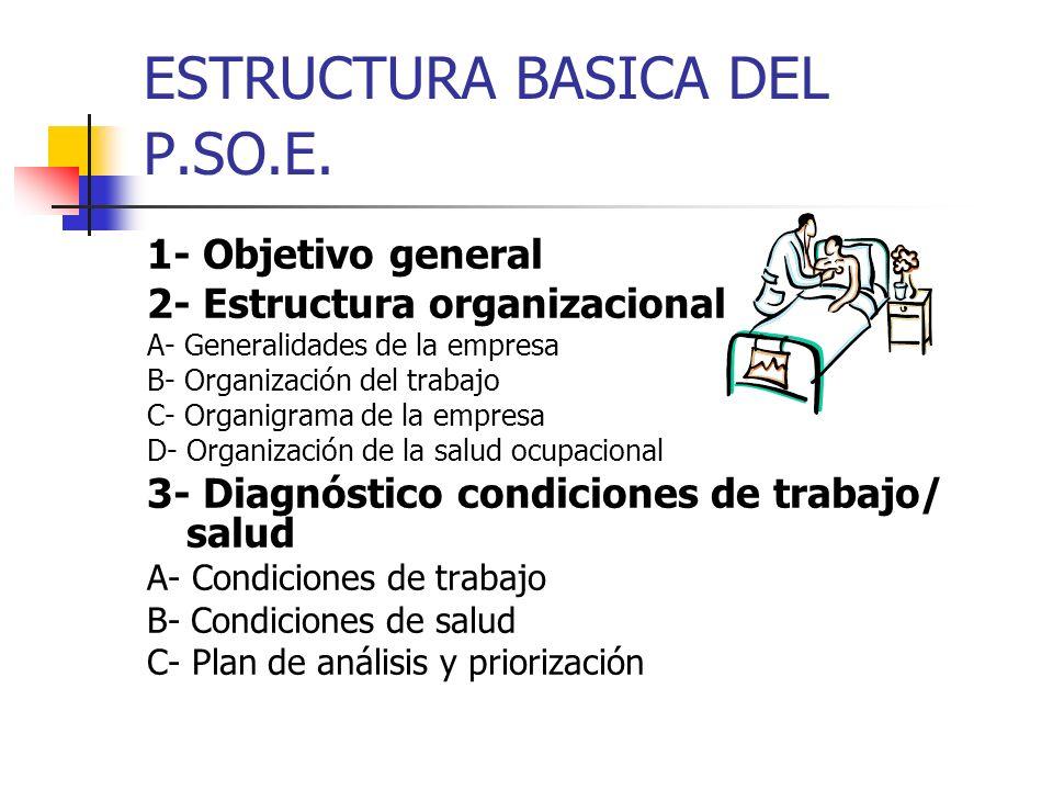 ESTRUCTURA BASICA DEL P.SO.E. 1- Objetivo general 2- Estructura organizacional A- Generalidades de la empresa B- Organización del trabajo C- Organigra