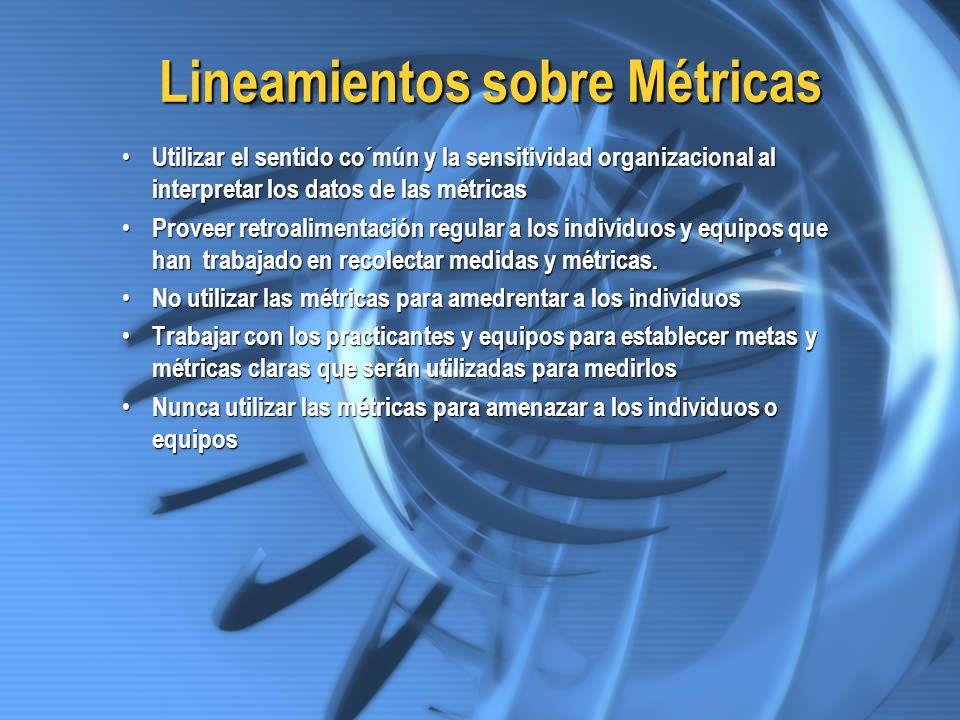 Lineamientos sobre Métricas Utilizar el sentido co´mún y la sensitividad organizacional al interpretar los datos de las métricas Utilizar el sentido c