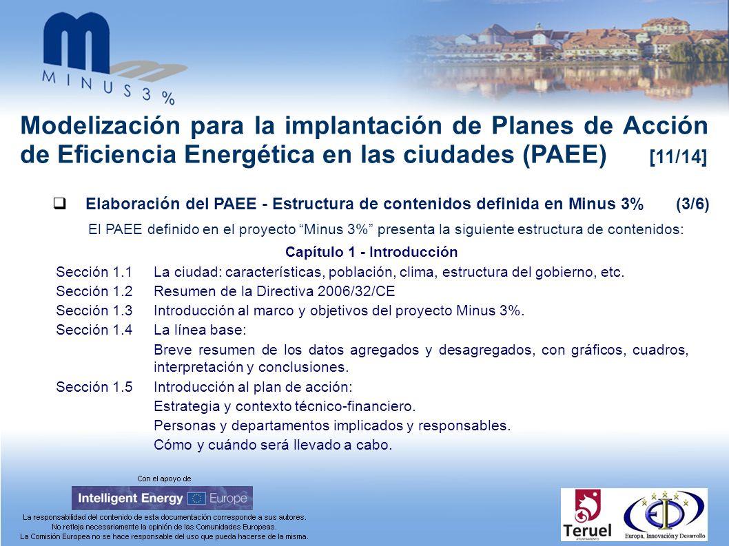 Modelización para la implantación de Planes de Acción de Eficiencia Energética en las ciudades (PAEE) [11/14] Elaboración del PAEE - Estructura de con