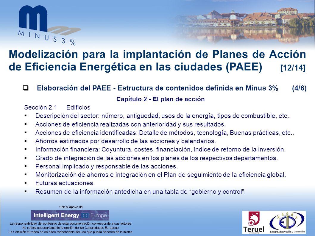 Modelización para la implantación de Planes de Acción de Eficiencia Energética en las ciudades (PAEE) [12/14] Elaboración del PAEE - Estructura de con