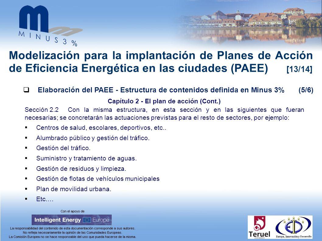Modelización para la implantación de Planes de Acción de Eficiencia Energética en las ciudades (PAEE) [13/14] Elaboración del PAEE - Estructura de con